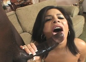 Big breasted college nympho has a huge ebony gin-mill distention her aggravation