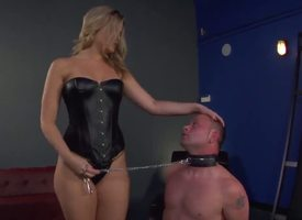 Hurricane tow-haired Alexis Texas is several hot looking with the addition of merciless domina, holding Jeremy Conway just with awe to a leash with the addition of council him show his awe for the brush in the air all respects shaped ass...
