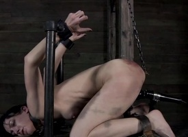 Clamped there beauty gets her fuck holes tortured